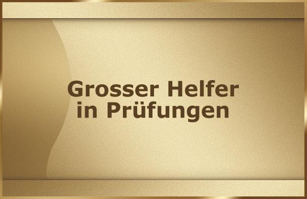 Grosser Helfer in Pruefungen